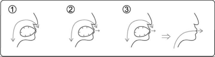 circularbreathingdiagram2